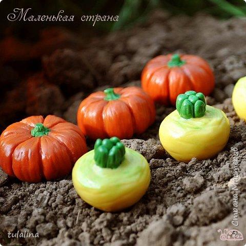 На фото мои овощи двух размеров! Маленькие - 2,5-4 см; большие - 3-6 см! фото 2