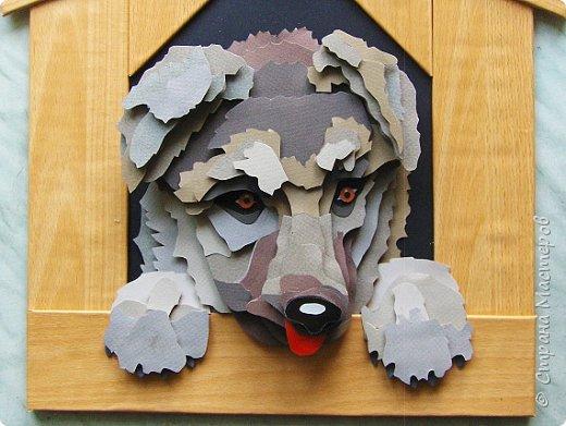 Волк. Размер работы 41х57 см. фото 59