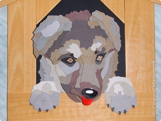 Волк. Размер работы 41х57 см. фото 62