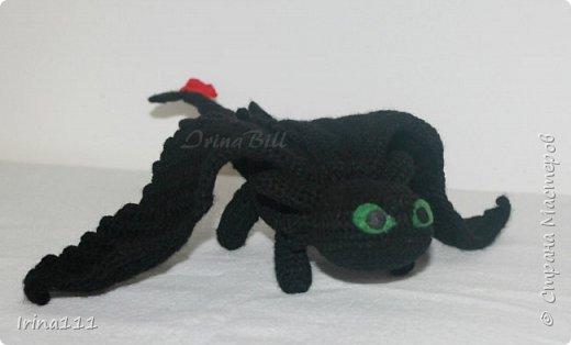 Дракон Беззубик фото 1