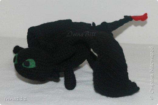 Дракон Беззубик фото 2