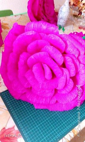 Всем здравствуйте! На днях пришлось мне сделать розы большого размера 50-60см в диаметре. При сборке столкнулась с некоторыми проблемами и решила поделиться своими находками, может кому-нибудь пригодится. фото 20