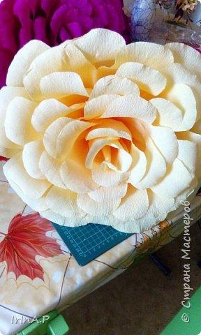 Всем здравствуйте! На днях пришлось мне сделать розы большого размера 50-60см в диаметре. При сборке столкнулась с некоторыми проблемами и решила поделиться своими находками, может кому-нибудь пригодится. фото 21