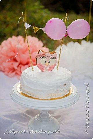 На первый День рождения моей внучки Ксюши мы устроили вечеринку в формате «Cake Smash» (англ. — «крушение торта»). Идеи по проведению вечеринки принадлежат Ксюшиной маме — Асе (моей старшей дочери). Смысл этой вечеринки в том, что первый в жизни ребёнка торт даётся  именно малышу, а не гостям. И именинник сам решает, что с ним делать. фото 12