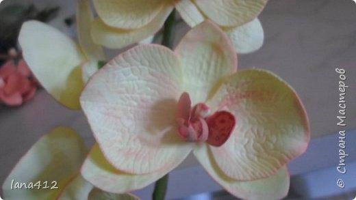 цветы из фома фото 12