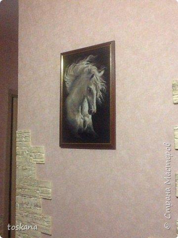Очаровательный конь. красота и грация!!! фото 4