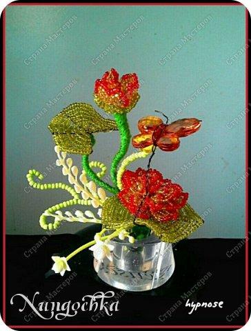 цветочки... фото 4