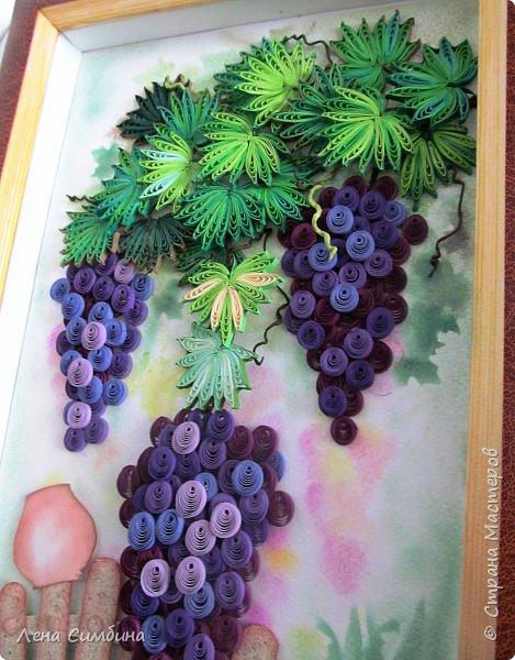 Здравствуйте. Всегда любовалась квиллинговыми виноградными панно. Вот, решила тоже попробовать сделать. фото 3