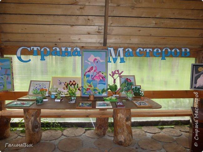 Вторым местом нашего временного жительства был Горно-Алтайский ботанический сад, расположенный по Чуйскому тракту в окрестности села Камлак и созданный в 1994 году. В него мы прибыли 26 июля. фото 16