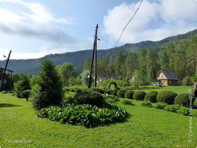 Вторым местом нашего временного жительства был Горно-Алтайский ботанический сад, расположенный по Чуйскому тракту в окрестности села Камлак и созданный в 1994 году. В него мы прибыли 26 июля. фото 21