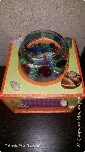 Дочка попросила рыбку - петуха, и вот мы решили сделать сней аквариум - ночник. Вот что получилось... фото 5