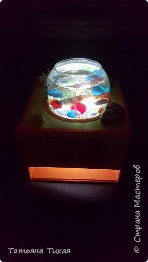 Дочка попросила рыбку - петуха, и вот мы решили сделать сней аквариум - ночник. Вот что получилось... фото 6