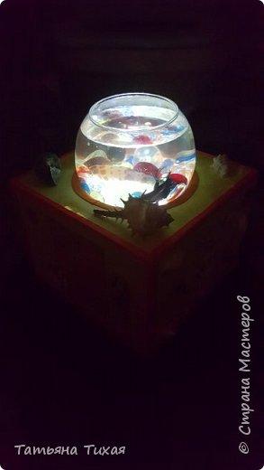 Дочка попросила рыбку - петуха, и вот мы решили сделать сней аквариум - ночник. Вот что получилось... фото 1