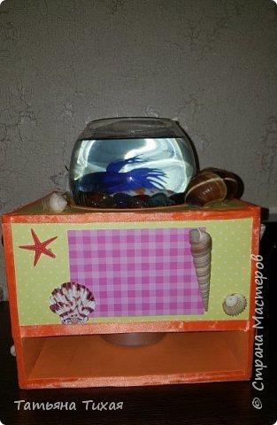 Дочка попросила рыбку - петуха, и вот мы решили сделать сней аквариум - ночник. Вот что получилось... фото 4