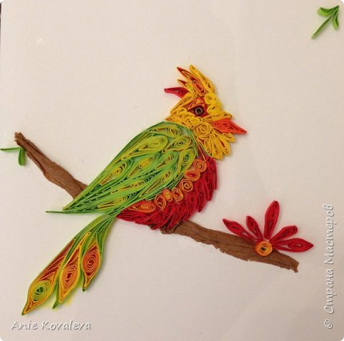 Птичка на ветке  фото 1