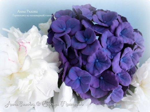 Мои цветочки из зефирки фото 2