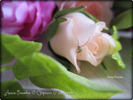 Вот ещё цветочки, они уже полностью из самоварного ХФ. Колоски стабилизированные, живые. Понравилось мне увековечивать растения и травинки))) фото 7