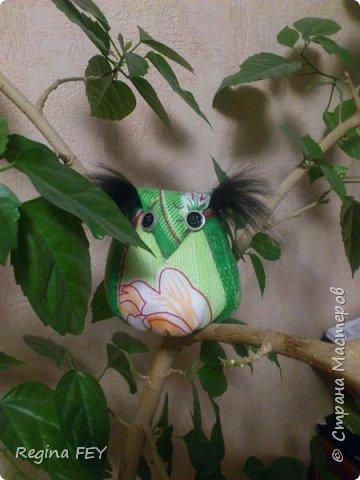 Вот такая совушка-красавица поселилась в моем гибискусе. Спасибо Ольге Бэк за ее МК! http://stranamasterov.ru/node/800883?c=favorite фото 1