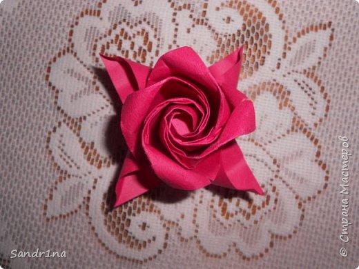 Розы кавасаки фото 2