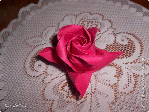 Розы кавасаки фото 3