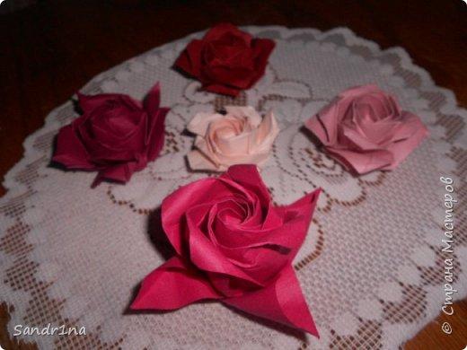 Розы кавасаки фото 1