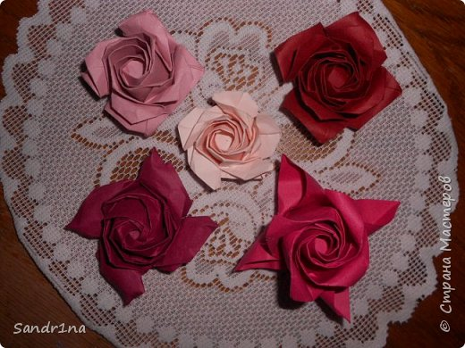 Розы кавасаки фото 13