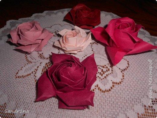 Розы кавасаки фото 11