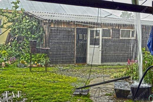 Добрый день, соседи по Стране Мастеров. Лето в этом году у нас оооочень жаркое. 30 градусов в тени. Дожди редкие, но есть. Урожай ягод смородины небывалый. У меня 14 дней отпуска. Половина которого уже прошла.... Но не будем о грустном... Мысль о том, что бы декорировать неприглядную стену напротив окна, давно поселилась в моей голове. Нашла в интернете подходящие схемы, распечатала.  фото 2