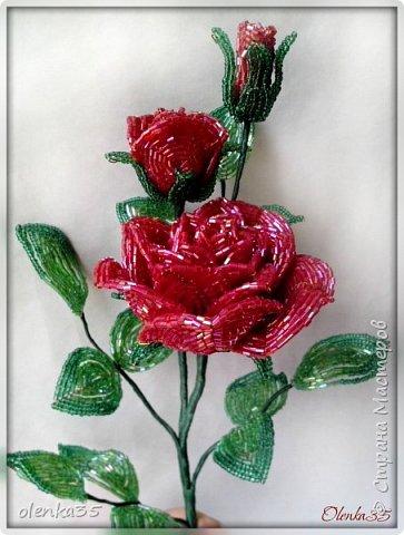 Роза сделана из рубки. фото 3