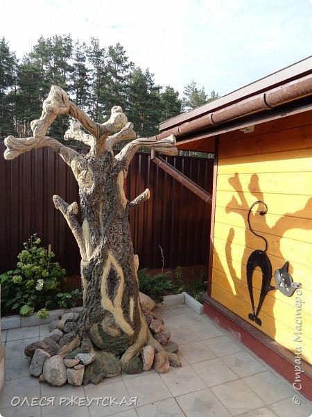 Здравствуй страна !!!!!! Вот наконец то  я заглянула в гости  Задумала грандиозный проект , вот начало положено. Теперь у меня есть вековое дерево.А сколько ещё всего будет.... фото 1