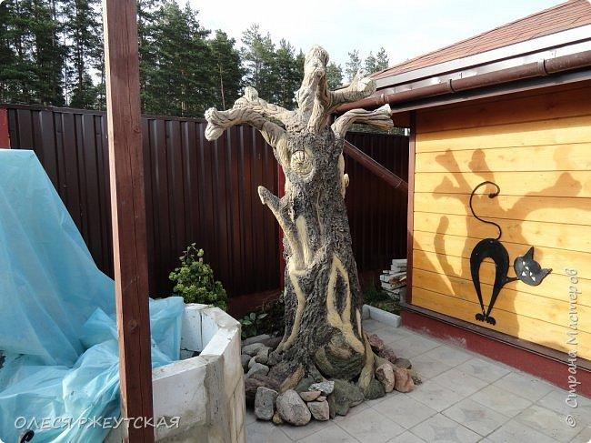 Здравствуй страна !!!!!! Вот наконец то  я заглянула в гости  Задумала грандиозный проект , вот начало положено. Теперь у меня есть вековое дерево.А сколько ещё всего будет.... фото 20