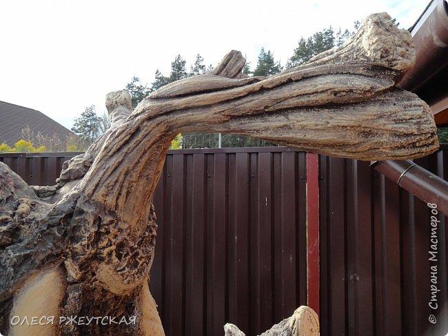 Здравствуй страна !!!!!! Вот наконец то  я заглянула в гости  Задумала грандиозный проект , вот начало положено. Теперь у меня есть вековое дерево.А сколько ещё всего будет.... фото 3
