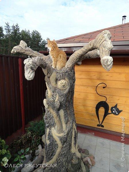 Здравствуй страна !!!!!! Вот наконец то  я заглянула в гости  Задумала грандиозный проект , вот начало положено. Теперь у меня есть вековое дерево.А сколько ещё всего будет.... фото 7