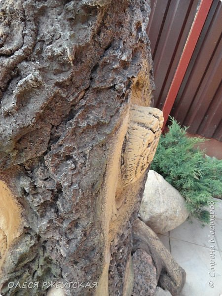 Здравствуй страна !!!!!! Вот наконец то  я заглянула в гости  Задумала грандиозный проект , вот начало положено. Теперь у меня есть вековое дерево.А сколько ещё всего будет.... фото 10