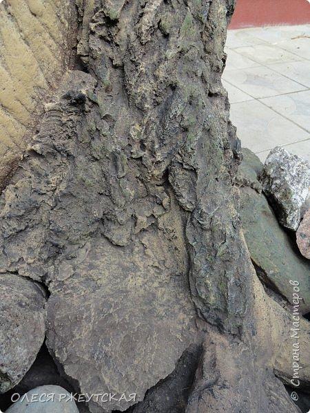 Здравствуй страна !!!!!! Вот наконец то  я заглянула в гости  Задумала грандиозный проект , вот начало положено. Теперь у меня есть вековое дерево.А сколько ещё всего будет.... фото 16