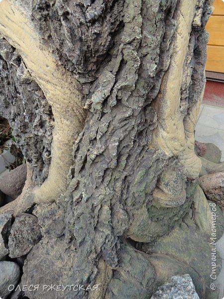 Здравствуй страна !!!!!! Вот наконец то  я заглянула в гости  Задумала грандиозный проект , вот начало положено. Теперь у меня есть вековое дерево.А сколько ещё всего будет.... фото 17