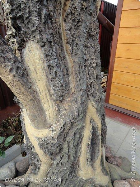 Здравствуй страна !!!!!! Вот наконец то  я заглянула в гости  Задумала грандиозный проект , вот начало положено. Теперь у меня есть вековое дерево.А сколько ещё всего будет.... фото 18