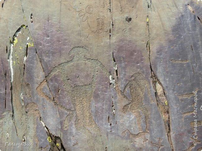 """28 июля. Жарко! Безумно красиво! Перевал Чике-Таман! Название перевала происходит от слов """"чике"""" - прямая, """"таман"""" - подошва. Через этот гранитный массив проходит Чуйский тракт.  фото 13"""