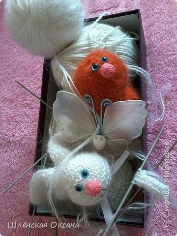 Доброго времени суток,Страна Мастеров!Хочу познакомить вас с Нюшей,что за зверь непонятно,для меня это кролик,для других это свинка,а может это тушканчик,всё дело в хвосте,как ни крути это кролик))) фото 2