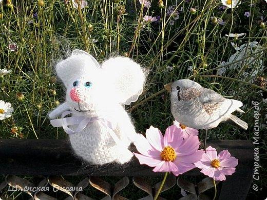Доброго времени суток,Страна Мастеров!Хочу познакомить вас с Нюшей,что за зверь непонятно,для меня это кролик,для других это свинка,а может это тушканчик,всё дело в хвосте,как ни крути это кролик))) фото 3