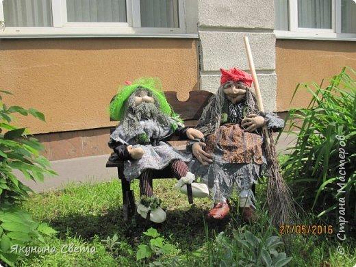 Еще два жителя нашего школьного двора. фото 1