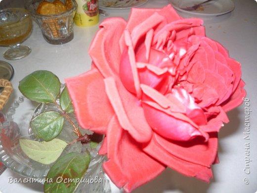 Приветствую  Вас , дорогие  гости  моей  странички,  дорогие  мои  подружки !   Что  дало  нам  это  лето ?  Конечно  же  ароматы  летних  цветов  и  любование  ими !    Я  с  удовольствием  делюсь  с  Вами  ! фото 37