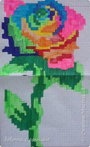 Радужные клеточки фото 1