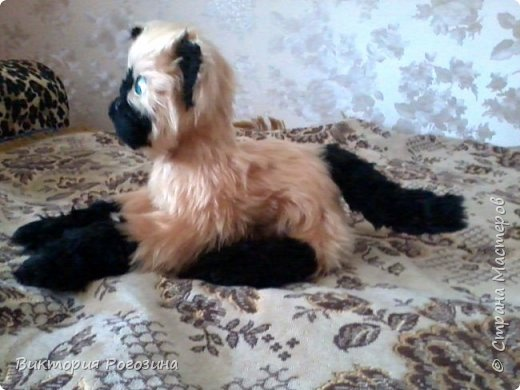 Котенок Татошка фото 2