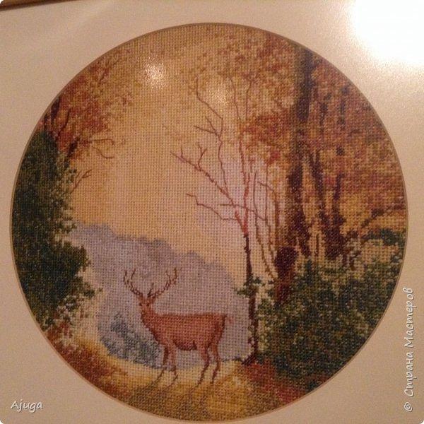 Давно вышитые картины, теперь украшают мой дом фото 2