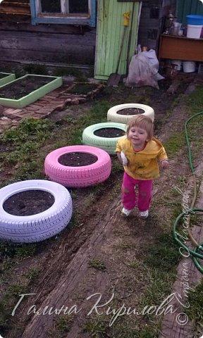 Добрый день ! Вот решила выложить свои весенние труды . Это мой двор в процессе работы . Это грядки под клубнику . фото 9