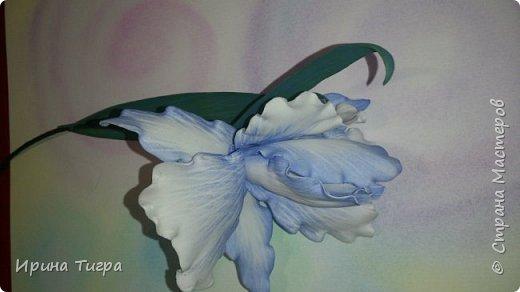 рисунок сделан зубочисткой , а цвет тонировала пастелью   фото 3