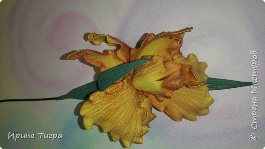 рисунок сделан зубочисткой , а цвет тонировала пастелью   фото 4