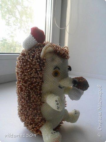 Ежик с грибами фото 2