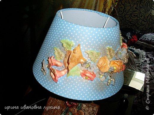 настольная лампа домище фото 12